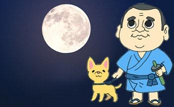 お月見は平安時代から始まったとされています。